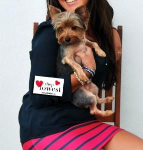 blog de moda perro