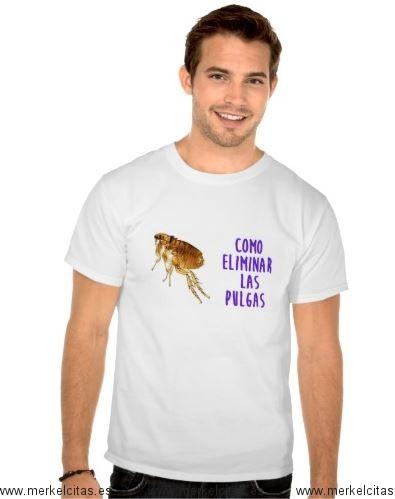 como eliminar pulgas