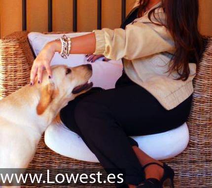 chaquetas blog moda 9932945