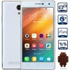 V5 5.0 inch Android 4.4 3G Smartphone