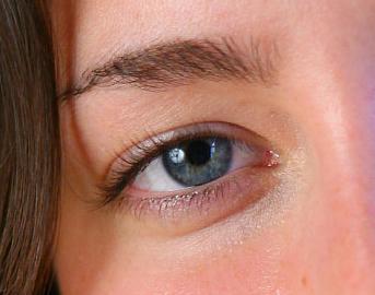 El hielo con las hierbas de las arrugas bajo los ojos