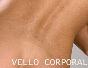 revitol crema depilacion