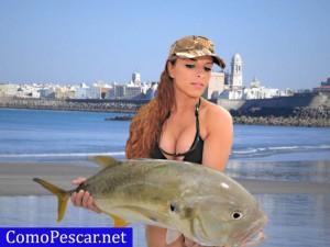 pesca españa mejores