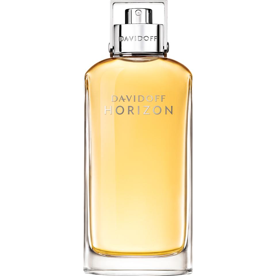 Davidoff Horizon Eau de Toilette (125ml)