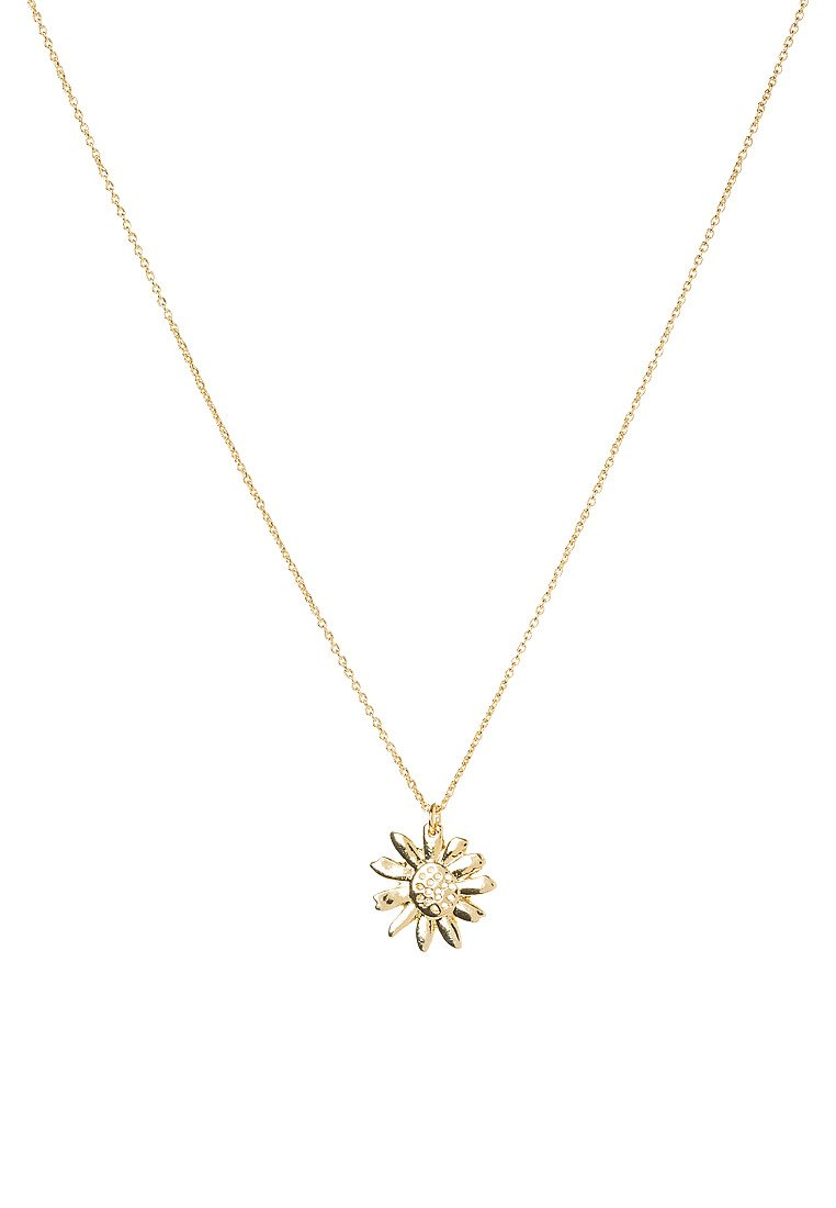 Collares Whistles DAISY Collar goldcoloured