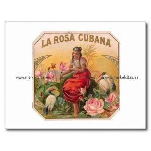 la rosa cubana diseno vintage cuba postal retrocharms