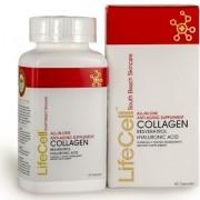 suplemento colageno lifecell