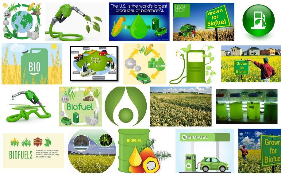 biocombustibles 2019