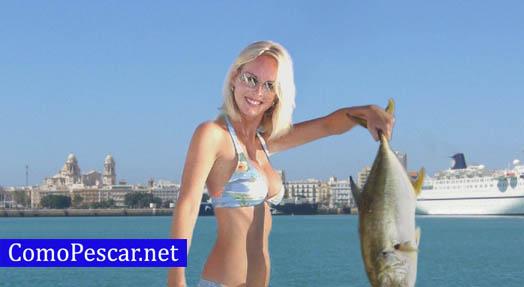 pesca cadiz fotos
