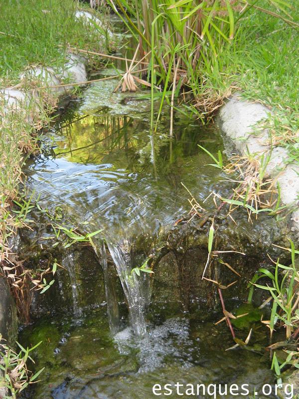 fotos estanques españa