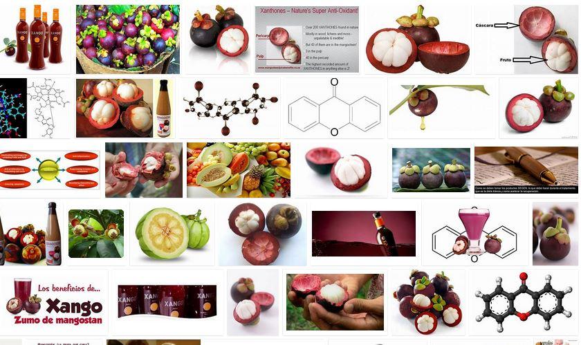xantonas antioxidantes