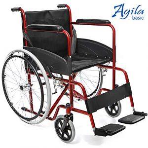 Silla ruedas compatible con hoverboard AIESI AGILA BASIC